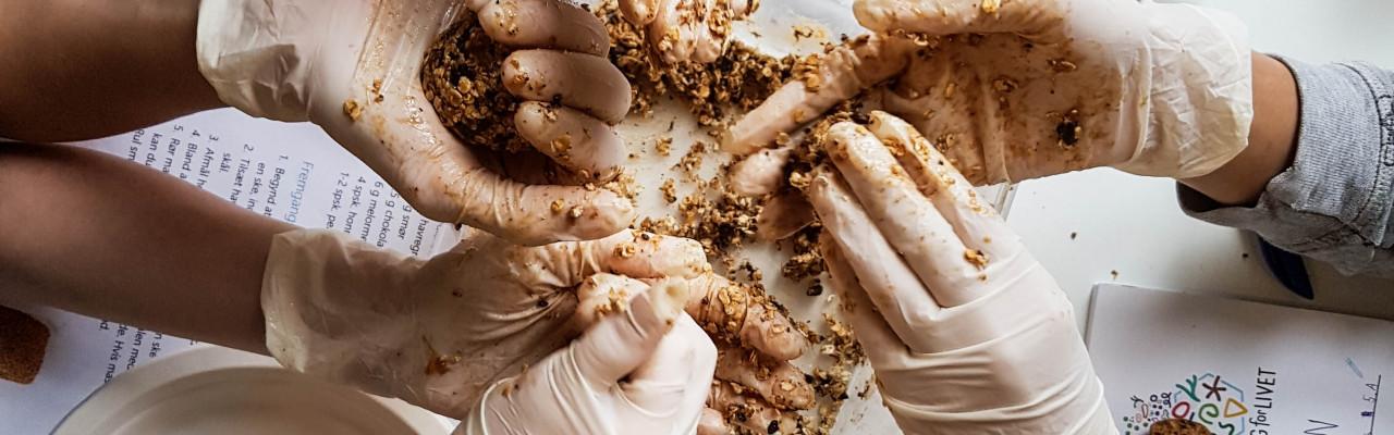 Melorme er mere appetitlige end græshopper, syntes børnene i forsøget. Foto: Charikleia Karagiannaki