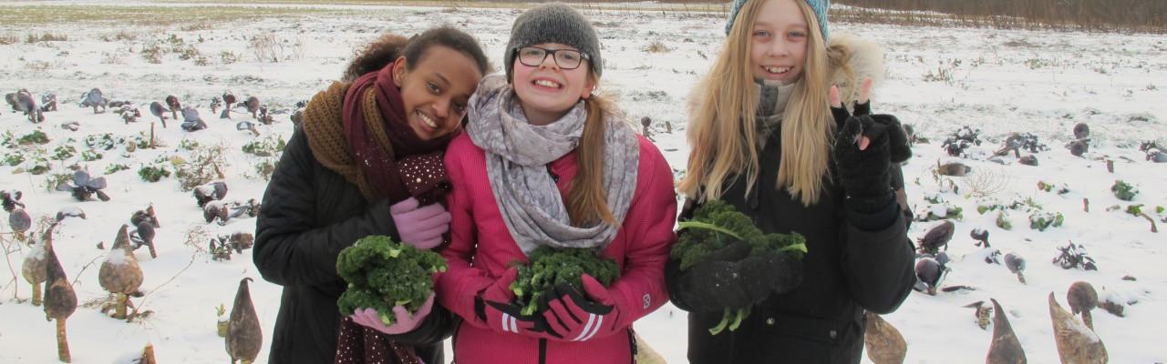 Disse piger fra 6.D har styr på grønkål. Og de 10-12-årige har også mod på at smage noget ukendt - de drives af deres nysgerrighed, viser et nyt studie. Foto: Anne Bech
