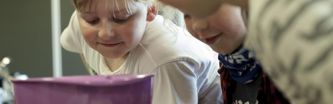 Nysgerrighed får børn til at smage nyt. Foto: Stagbird.