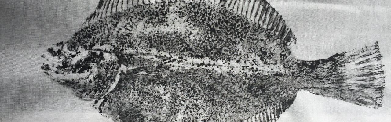Rikke Højer har brugt japansk fisketryk - gyotaku - i sin forskning med skoleelever. Foto: Rikke Højer Nielsen.