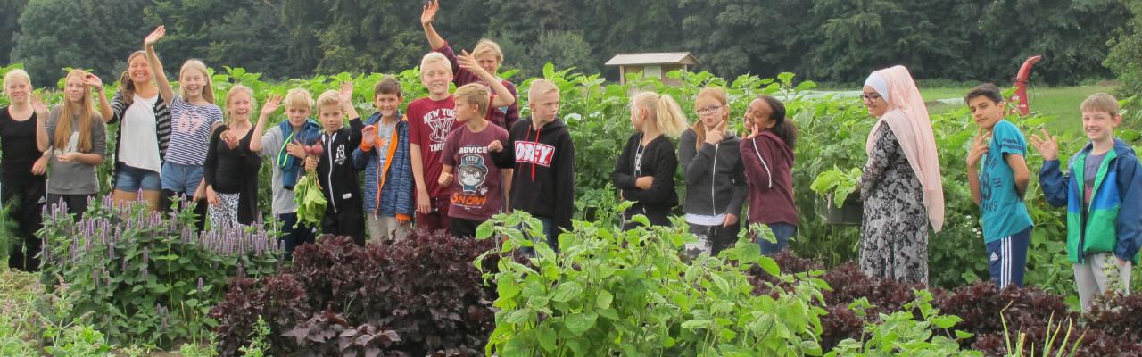 6.D fra Brøndbyøster Skole har madkundskab i marken. Foto: Anne Bech