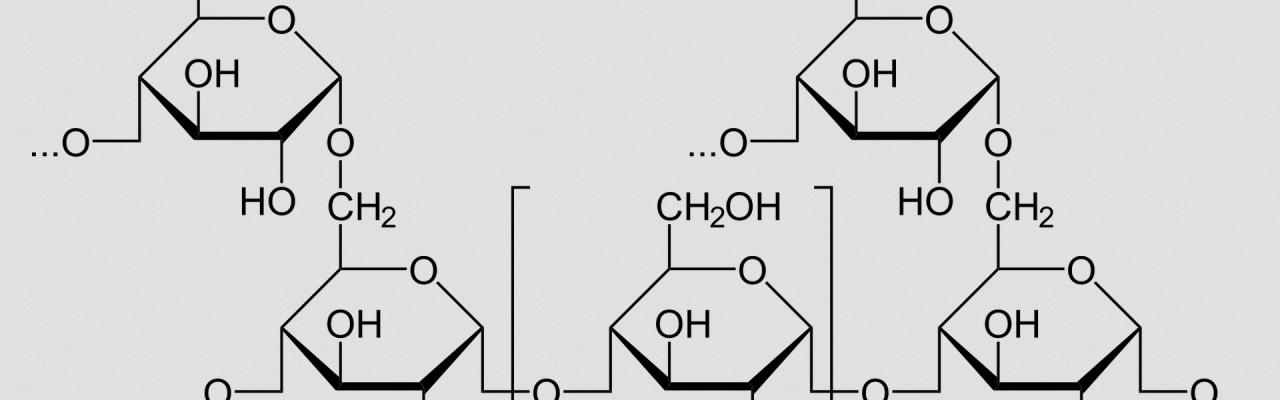 Glykogen