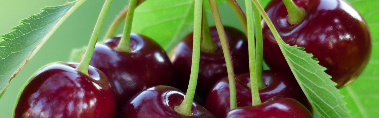 Kirsebær. Foto: Pixabay