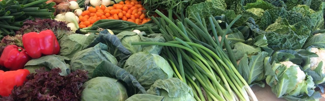 Med Den grønne pose har man en genvej til grøn mad og mindre madspild. Foto: Eva Rymann