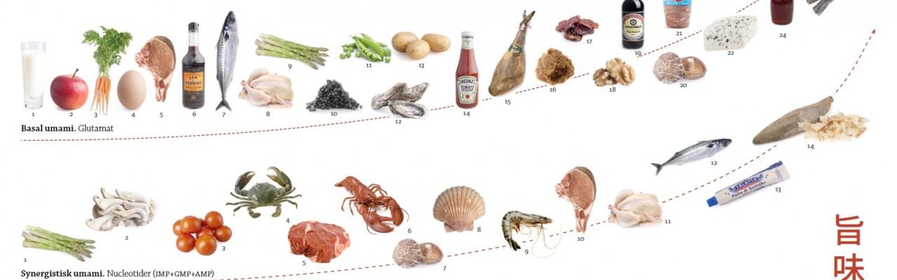 """Et overblik over råvarer med umami. Grafik fra bogen """"Umami. Gourmetaben og den femte smag""""."""