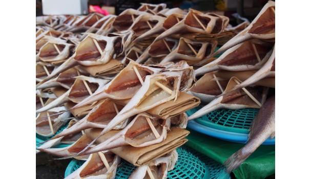 Fisk på fiskemarkedet