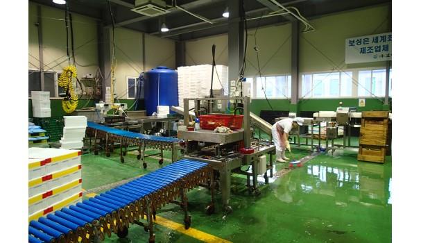 Fabrik skærer vandmænd