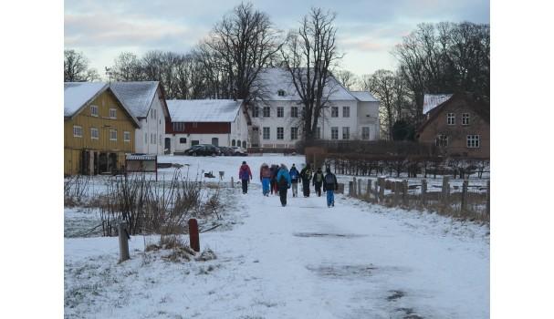 Krogerup Avlsgaard klædt i vinterfarver. Foto: Anne Bech