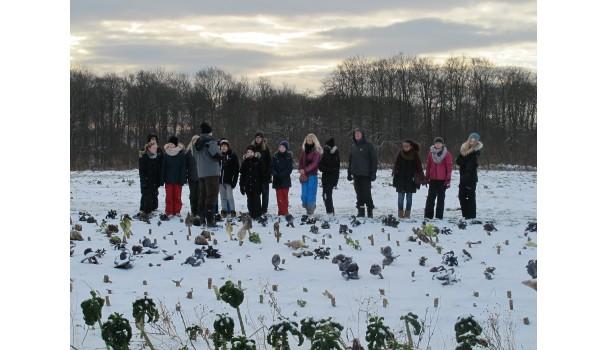 Eleverne i marken på Krogerup Avlsgaard. Foto: Anne Bech